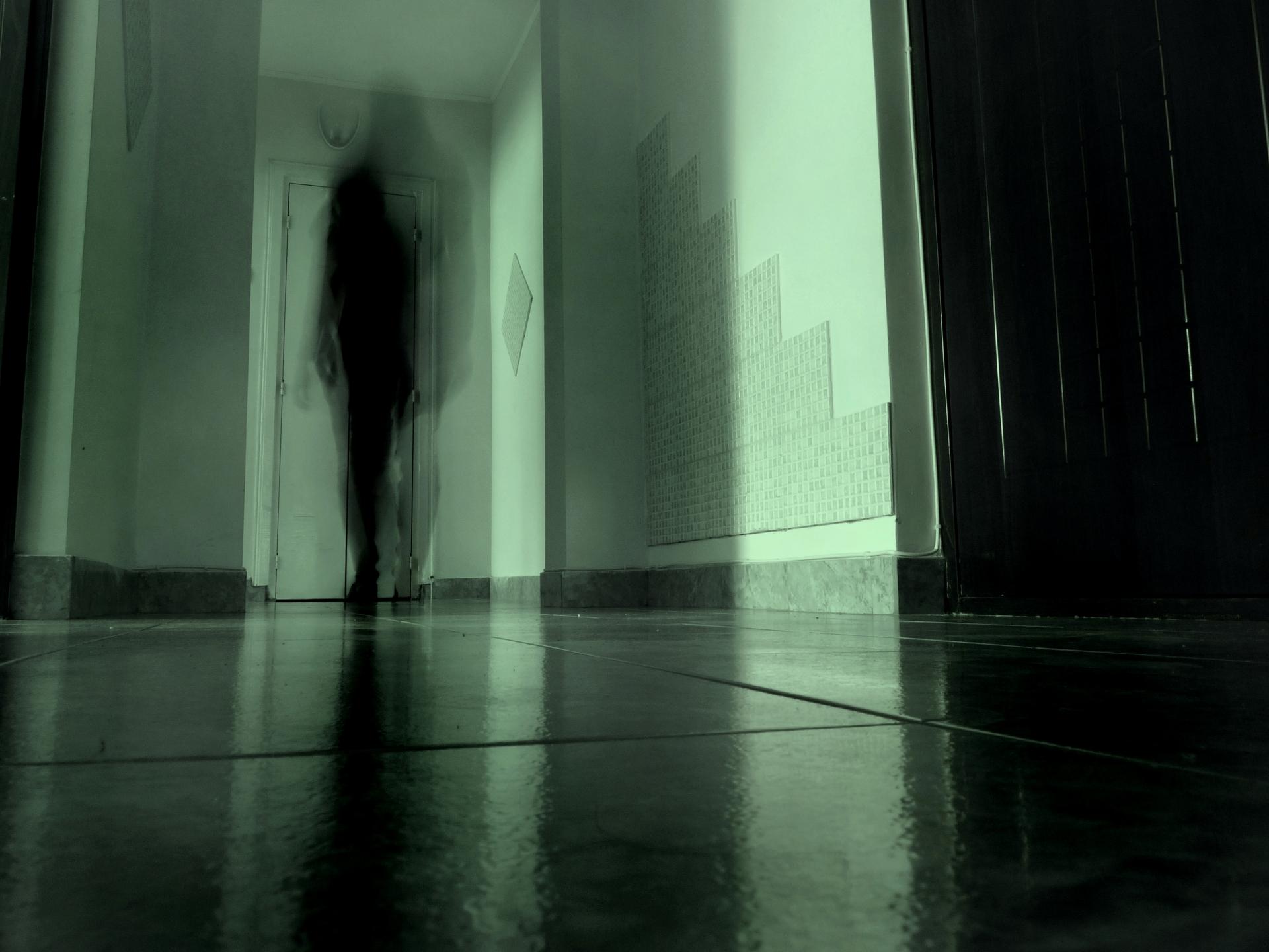 Mi è parso di vedere un fantasma